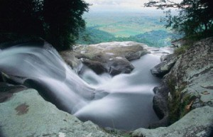 River in the Udzungwa Mountains, National Park (source: www.swahiliholidays.com)